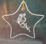 Star Ornament/Suncatcher with etched butterfly swirls design deeply sandblasted by hand out of the glass for a personalized custom ornament or suncatcher