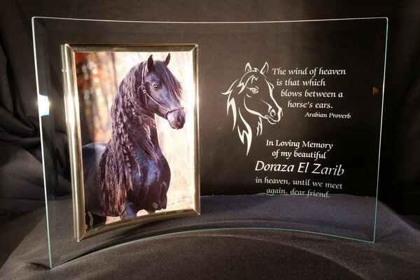 "Personalized Engraved 5"" x 7"" Curved Glass Horse Memorial Picture Frame"